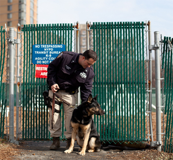 Canine Officer Danz and Officer Wayne Rothschild.(Photo by Adam McCauley/BBH)