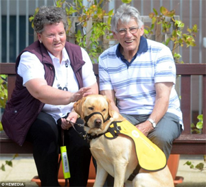 Dementia Dog Kaspa helps Ken and Glenys Will with everyday activities. (©HEMEDIA)
