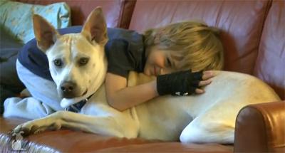 Leo and his dog Henry are just a normal boy and dog at home, but when they go out, Henry is all business as a service dog.