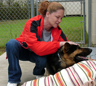 Shannon Lorio, 36, pets Hero the German Shepherd she credits with saving her life.