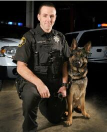 Maverick with his handler Deputy Danny Dipietro.