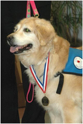 Penny wearing her Texas Animal Hall of Fame medal.