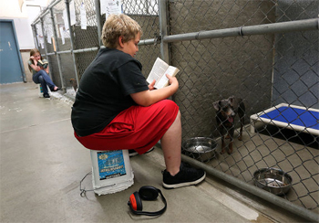 Brayden Rogers and Grace Kravik spend their Wednesday afternoon reading to dogs at the Biter Root Humane Association shelter in Hamilton, MT. Photo by Perry Backus