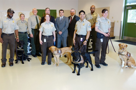 Meet the new class of retrievers that are now trained to help stop black market trade.
