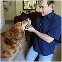 Wrigley and his owner Steven Werner.