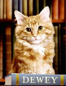 Spencer Librarian Vicki Myron, along with Dewey, received a $1.25 million advance to write a book about the cat that lived in the library for 19 years and gained national and international attention before his death in December 2006.