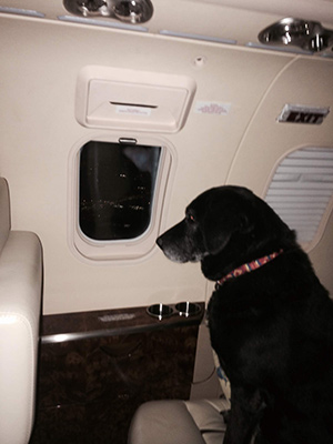 Lady and her view from the jet! Photo courtesy of Chet Ragsdale.