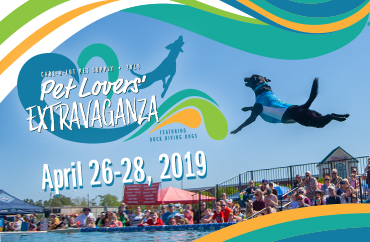 Pet Lovers' Extravaganza 2019
