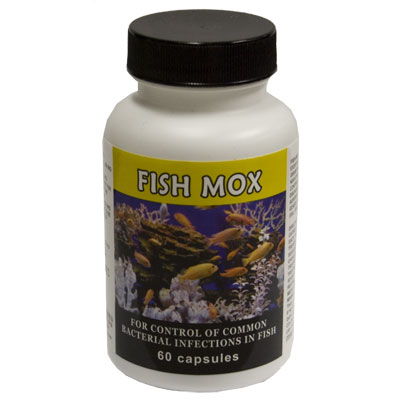 Thomas Labratories Fish Mox® Amoxicillin 250 mg 3052b