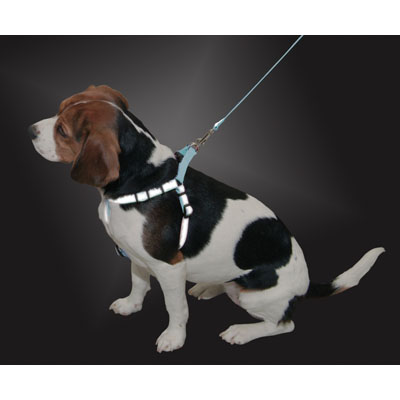 "LaZer Brite® Reflective Comfort Wrap Step-In Harness Turquoise with Bones Design 1"" x 26""-38"" 200224"