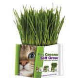 Pet Greens® Garden Pet Grass Self-Grow Kit 75320