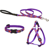 Lupine® Spring Fling Patterened Collars, Harness and Leads 10331b