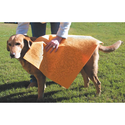 Absorbent Pet Towel 20 x 27 1284