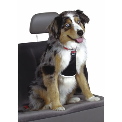 Easy Rider Car Harness 1328B