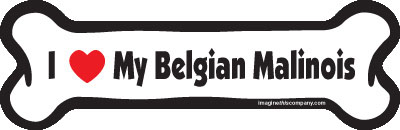 "I Love My Belgian Malinois Dog Bone Magnet 7"" 19050075"