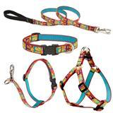 Lupine® Crazy Daisy Patterned Collars, Harnesses and Leads 225601b