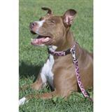 Lupine Patterned Dog Collars,Harnesses and Leashes 3/4 inch 2256B