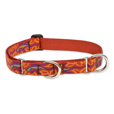 Lupine Dapper Dog Martingale Collar 1 Quot X 15 Quot 22 Quot Care A