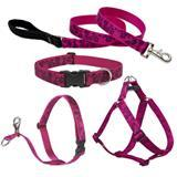 Lupine® Plum Blossom Patterned Collars, Harnesses and Leads 26451b