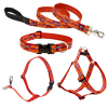Lupine® Go Go Gecko Patterned Collars, Harnesses and Leads 26453b
