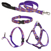 Lupine® Sunny Days Patterned Collars, Harnesses and Leads 264920b
