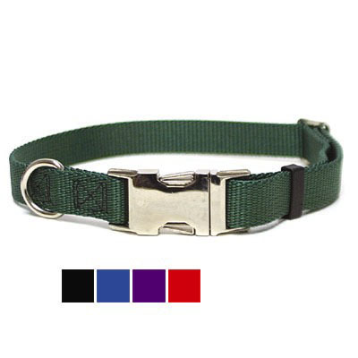 Titan Dog Collar 2829e
