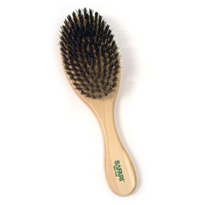 Bristle Brush for Dogs and Puppies