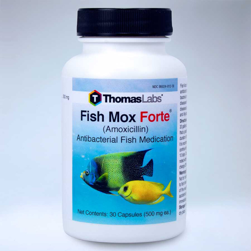Thomas Labratories Fish Mox® Forte® Amoxicillin 500 mg 30520b_