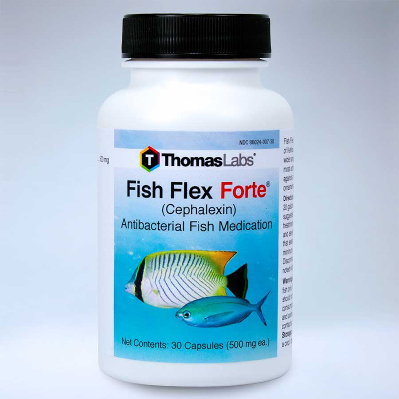 ThomasLabs® Fish Flex Forte® Cephalexin 500 mg 30550b_