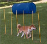Dog Games™ Dog Agility Starter Kit 4010
