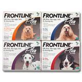 Frontline® Plus for Dogs 40543e