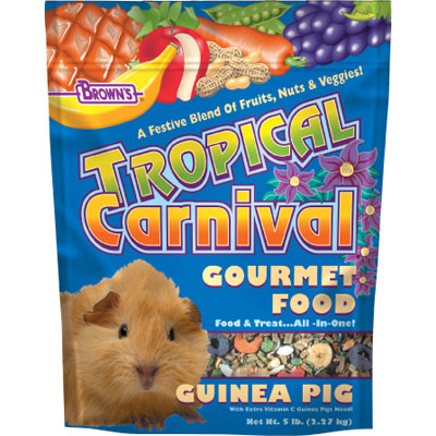 FM Brown's® Tropical Carnival Food for Guinea Pigs 57071b