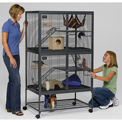 Midwest® Critter Nation™ Double Unit with Stand 36 in L x 24 in W x 63 in H