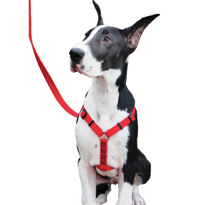 Coastal Adjustable Nylon Harness Red 61352e