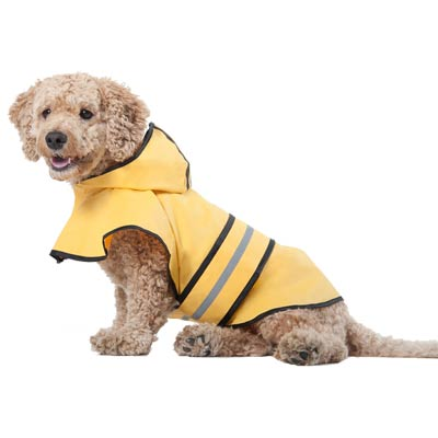 Fashion Pet™ Yellow Rain Slicker 656001b