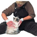 Coastal® Cat Grooming Glove, Pair by Groomaster® 7587