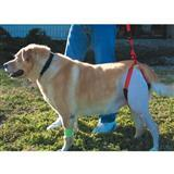 Bottom's Up Leash 9401