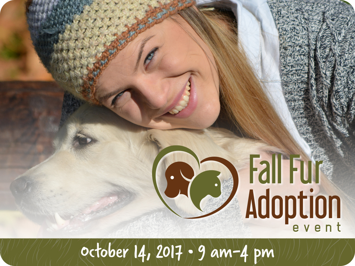 Fall Fur Adoption Event 2017