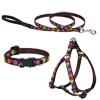 Lupine® Candy Apple Patterned Collars, Harnesses and Leads I002060b