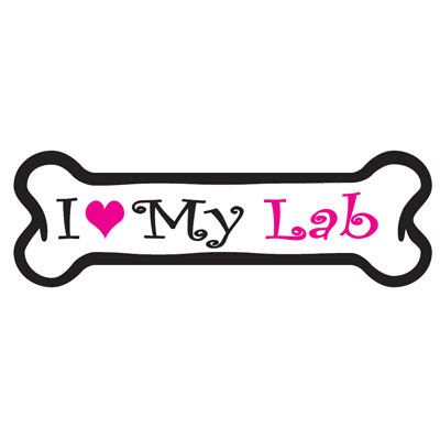 Dog Bone Magnet in Pink Labrador 29050355