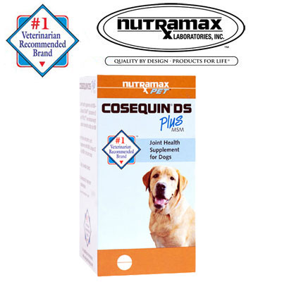 Nutramax Laboratories™ Cosequin® DS Plus MSM for Dogs 45012b