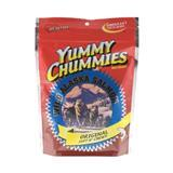 Yummy Chummies® Original Wild Alaska Salmon Dog Treats 1.25 lbs. I001978