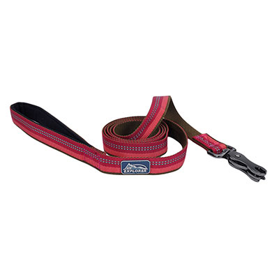 "Coastal K9 Explorer Reflective Scissor Snap Berry Lead 1"" X 6' I006385"
