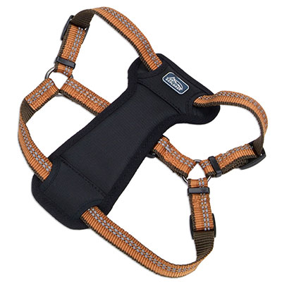 Coastal K9 Explorer Reflective Adjustable Padded Dog Harness Campfire Orange I006405e