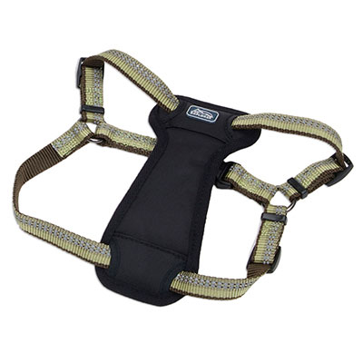 Coastal K9 Explorer Reflective Adjustable Padded Dog Harness Fern I006406e