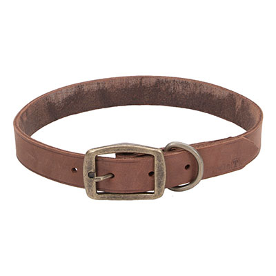 "Coastal® Circle T® Rustic Leather Town Dog Collar Chocolate 1"" I006536b"