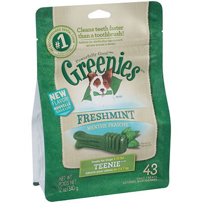 Greenies® Fresh Mint Dog Treats 12 oz. I007793b