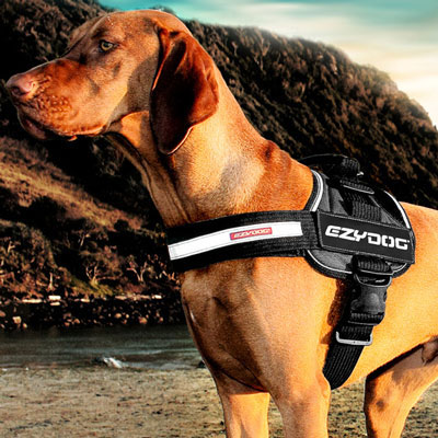 EzyDog® Convert Harness & Accessories I007966b