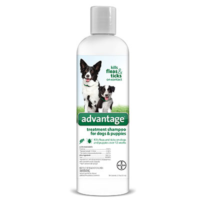 Advantage® Treatment Shampoo for Dogs & Puppies I008373b