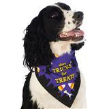 Rubie's® Pet Shop™ Boutique Tricks for Treats Halloween Dog Bandana I009400b